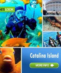 Catalina Divers Supply