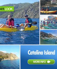 Catalina Island Kayak Expeditions